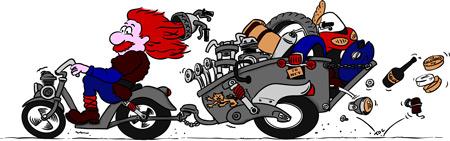 viking puces moto
